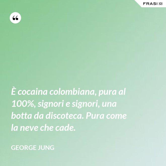 È cocaina colombiana, pura al 100%, signori e signori, una botta da discoteca. Pura come la neve che cade. - George Jung
