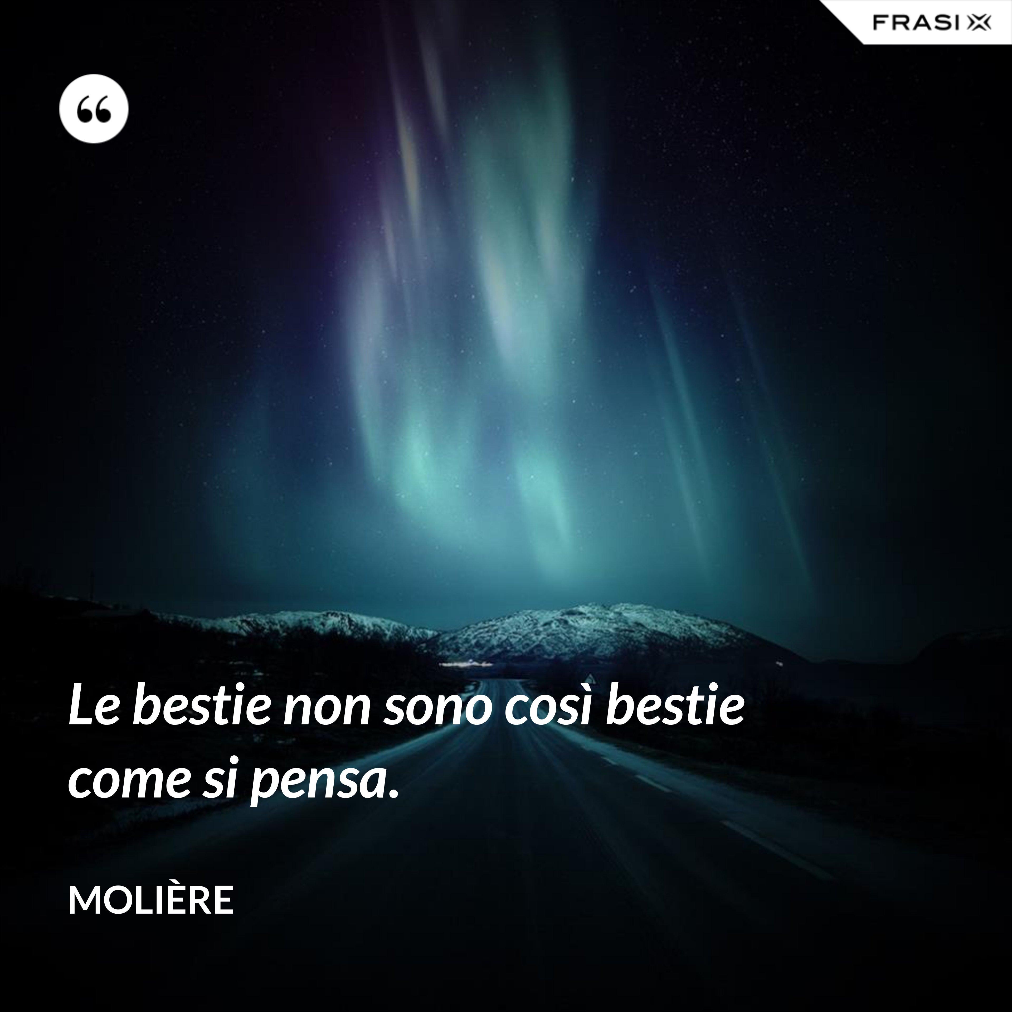 Le bestie non sono così bestie come si pensa. - Molière