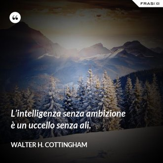 L'intelligenza senza ambizione è un uccello senza ali. - Walter H. Cottingham