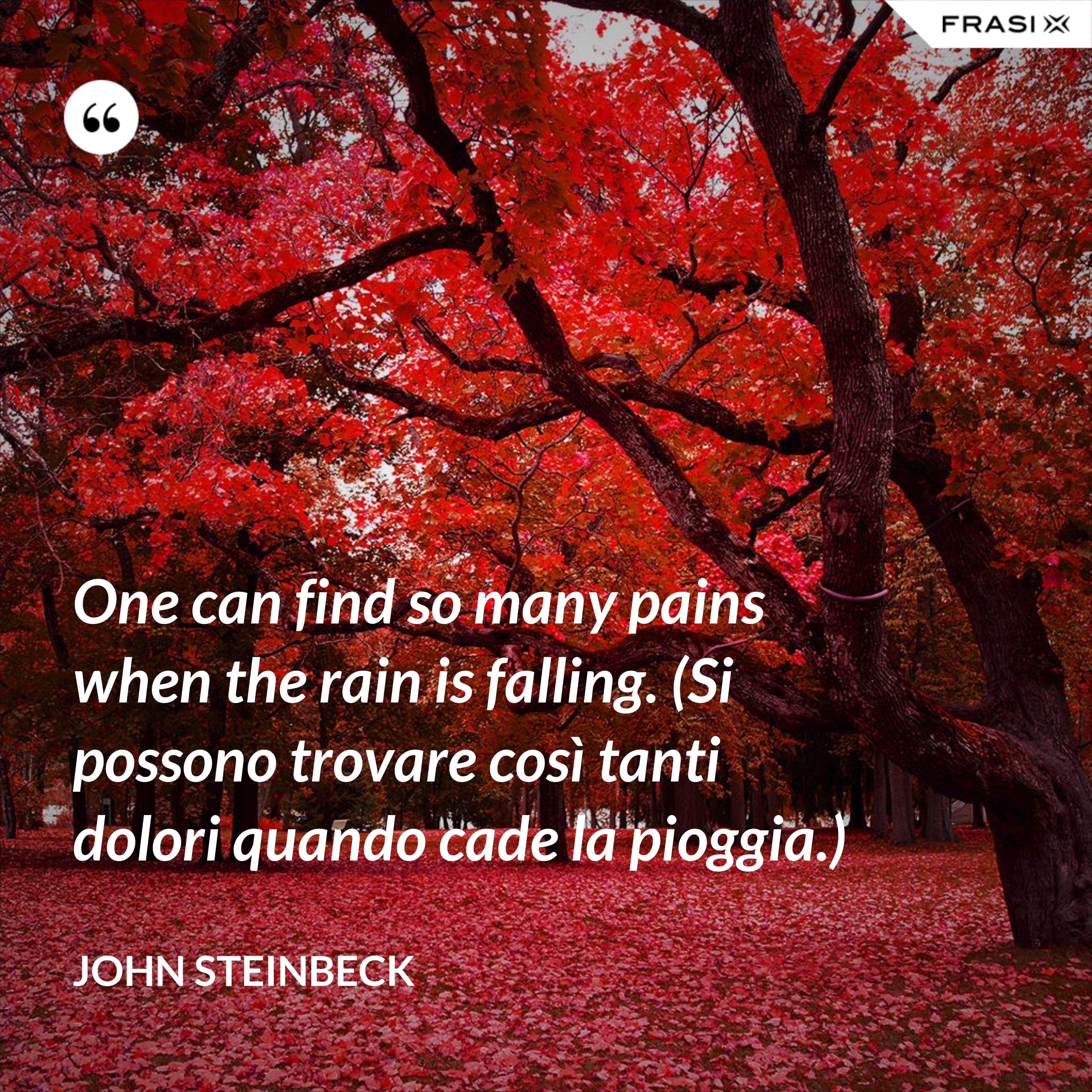One can find so many pains when the rain is falling. (Si possono trovare così tanti dolori quando cade la pioggia.) - John Steinbeck