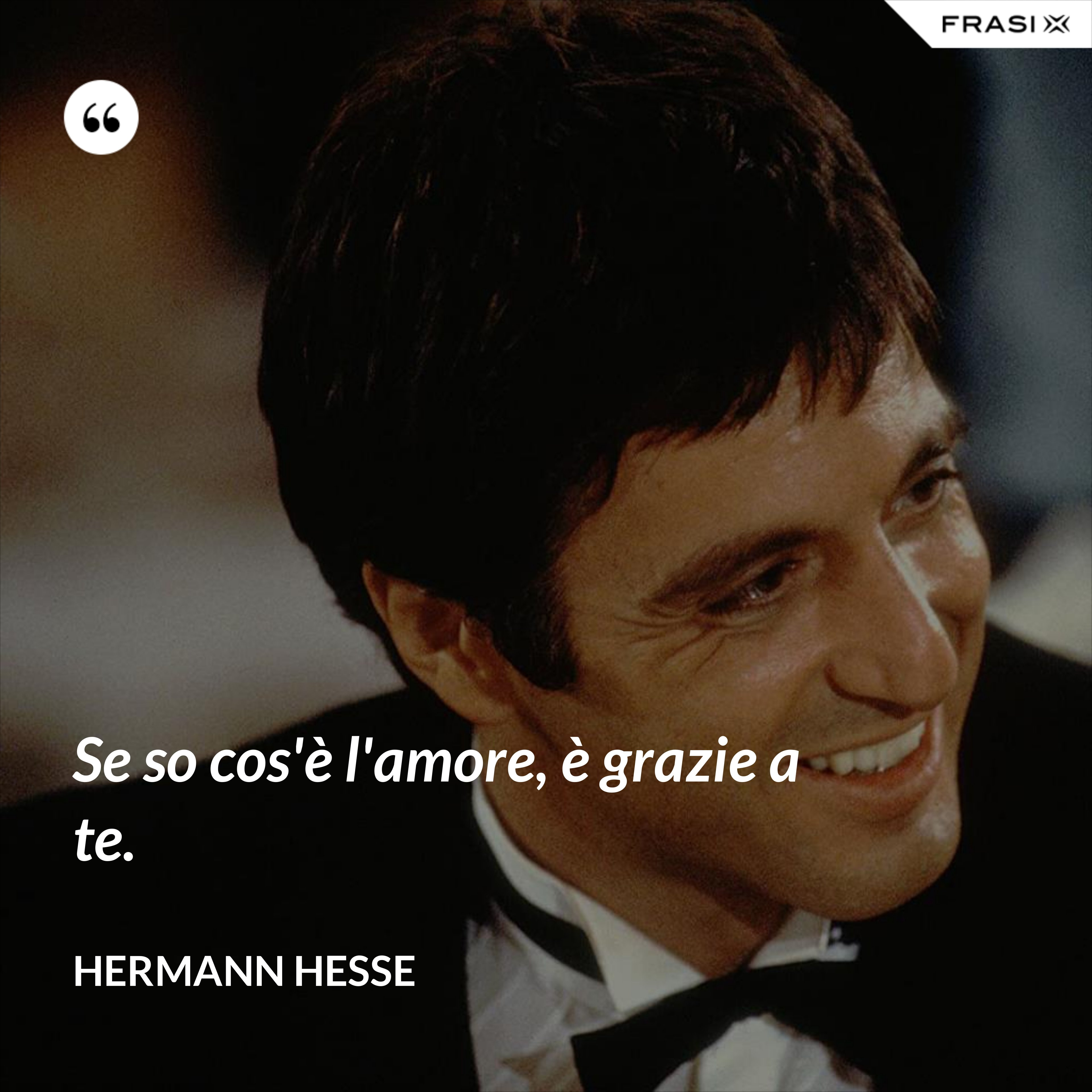 Se so cos'è l'amore, è grazie a te. - Hermann Hesse