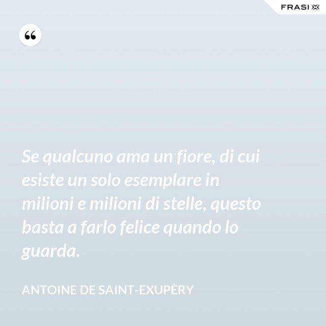 Se qualcuno ama un fiore, di cui esiste un solo esemplare in milioni e milioni di stelle, questo basta a farlo felice quando lo guarda. - Antoine de Saint-Exupèry