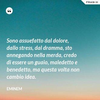 Sono assuefatto dal dolore, dallo stress, dal dramma, sto annegando nella merda, credo di essere un guaio, maledetto e benedetto, ma questa volta non cambio idea. - Eminem