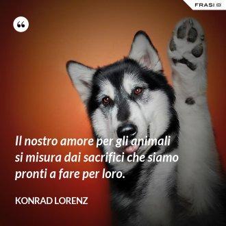 Il nostro amore per gli animali si misura dai sacrifici che siamo pronti a fare per loro. - Konrad Lorenz