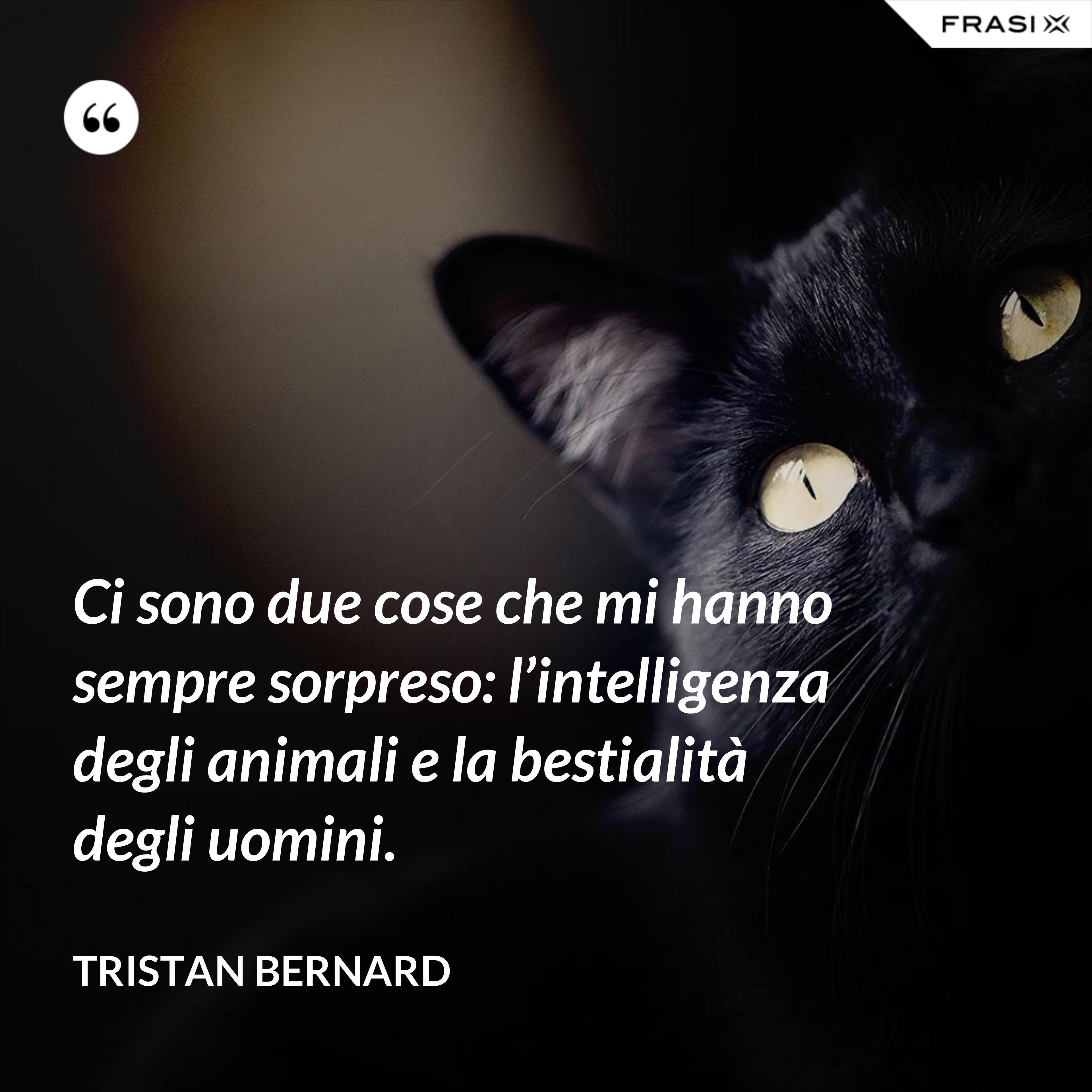 Ci sono due cose che mi hanno sempre sorpreso: l'intelligenza degli animali e la bestialità degli uomini. - Tristan Bernard