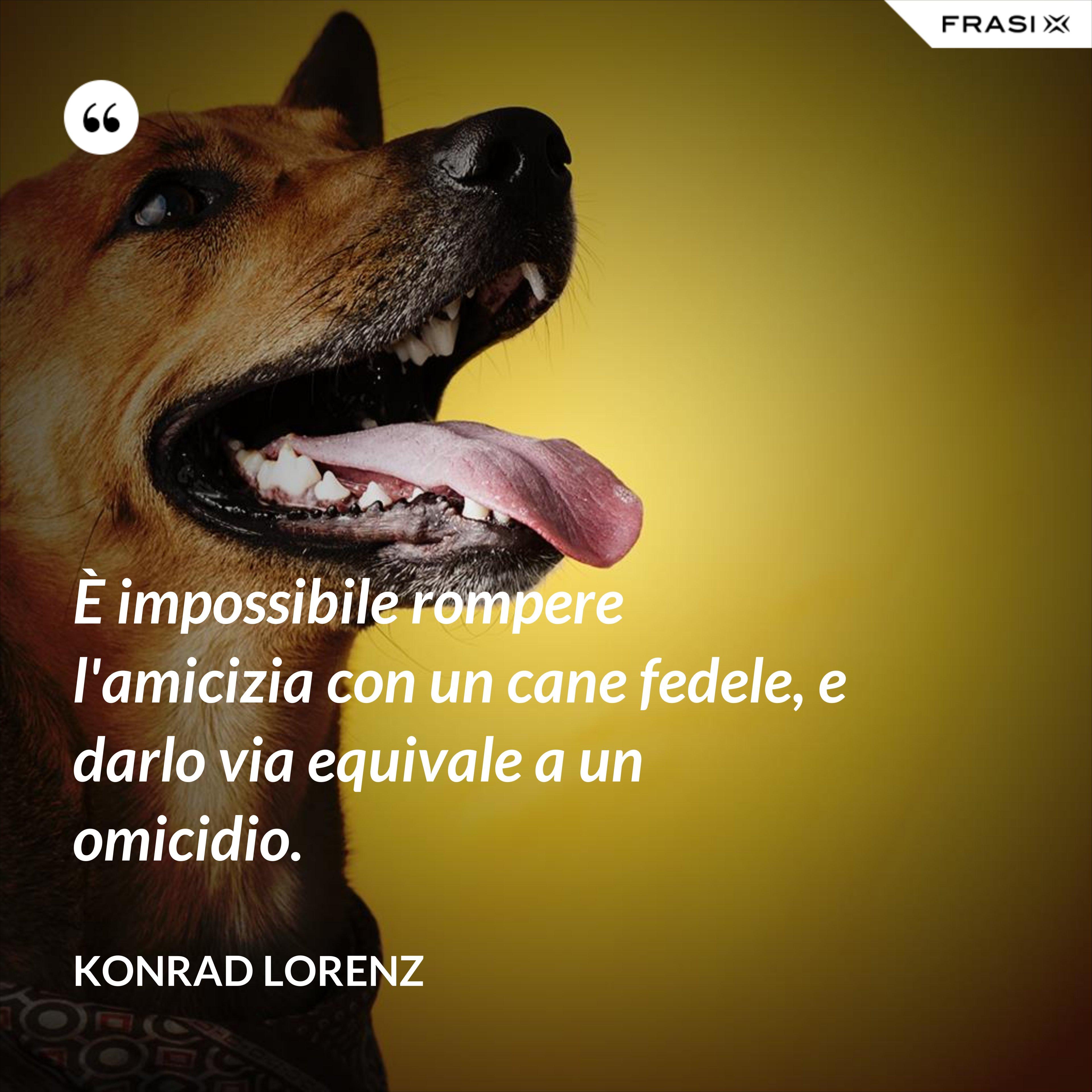 È impossibile rompere l'amicizia con un cane fedele, e darlo via equivale a un omicidio. - Konrad Lorenz