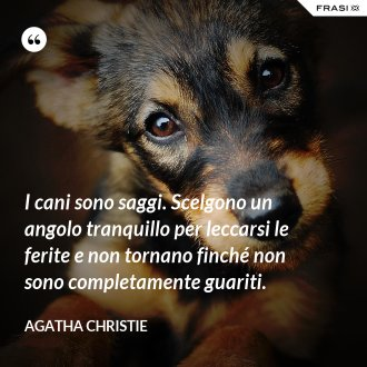 I cani sono saggi. Scelgono un angolo tranquillo per leccarsi le ferite e non tornano finché non sono completamente guariti. - Agatha Christie