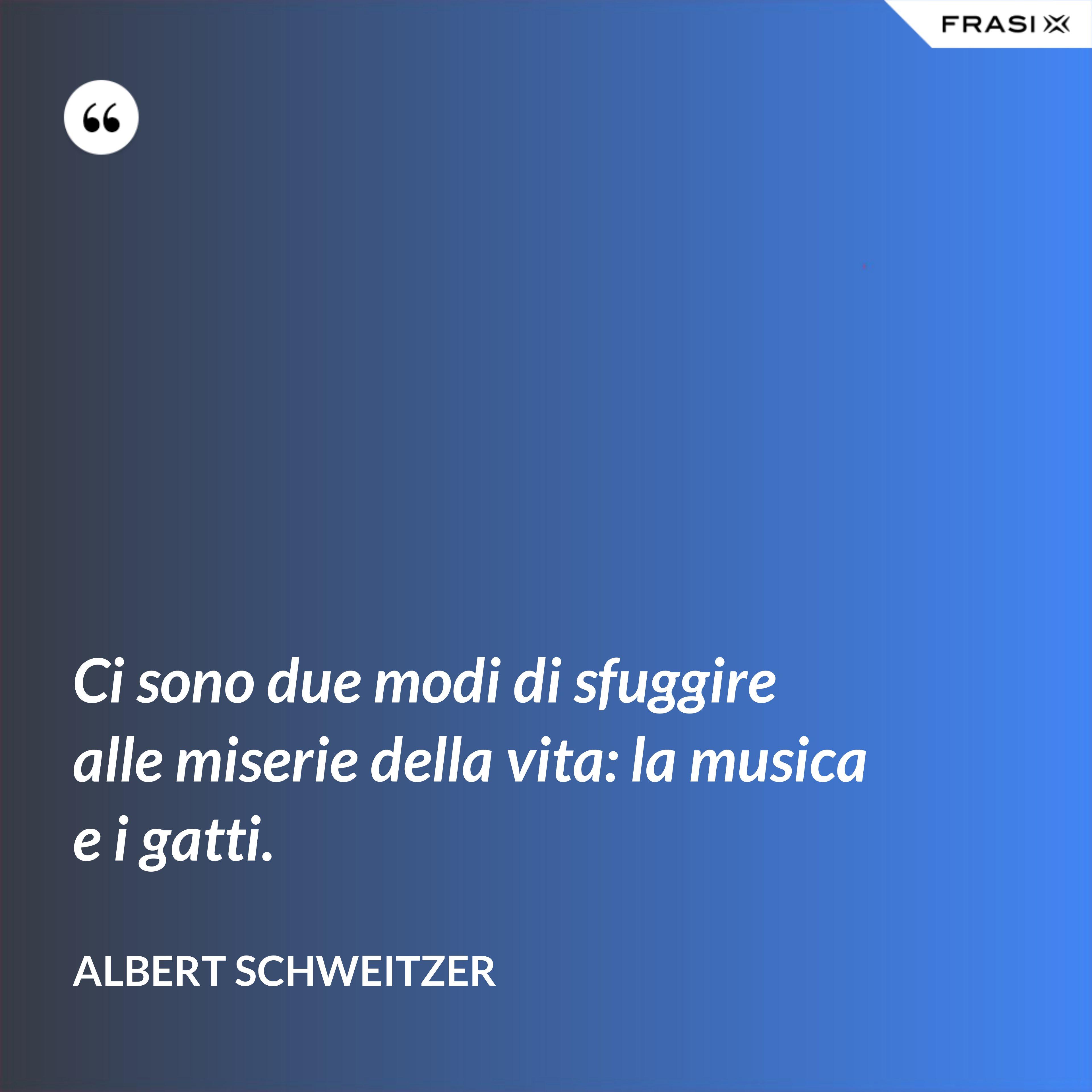 Ci sono due modi di sfuggire alle miserie della vita: la musica e i gatti. - Albert Schweitzer