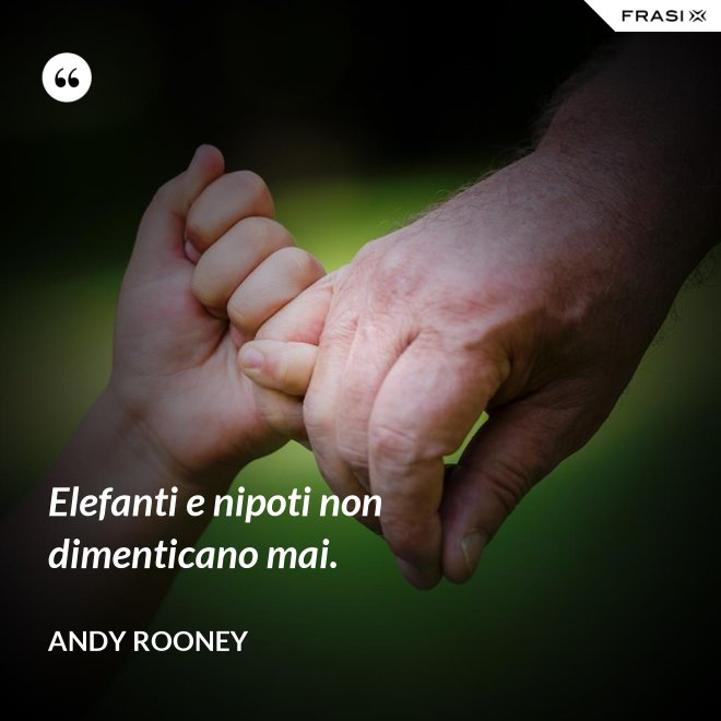 Elefanti e nipoti non dimenticano mai. - Andy Rooney