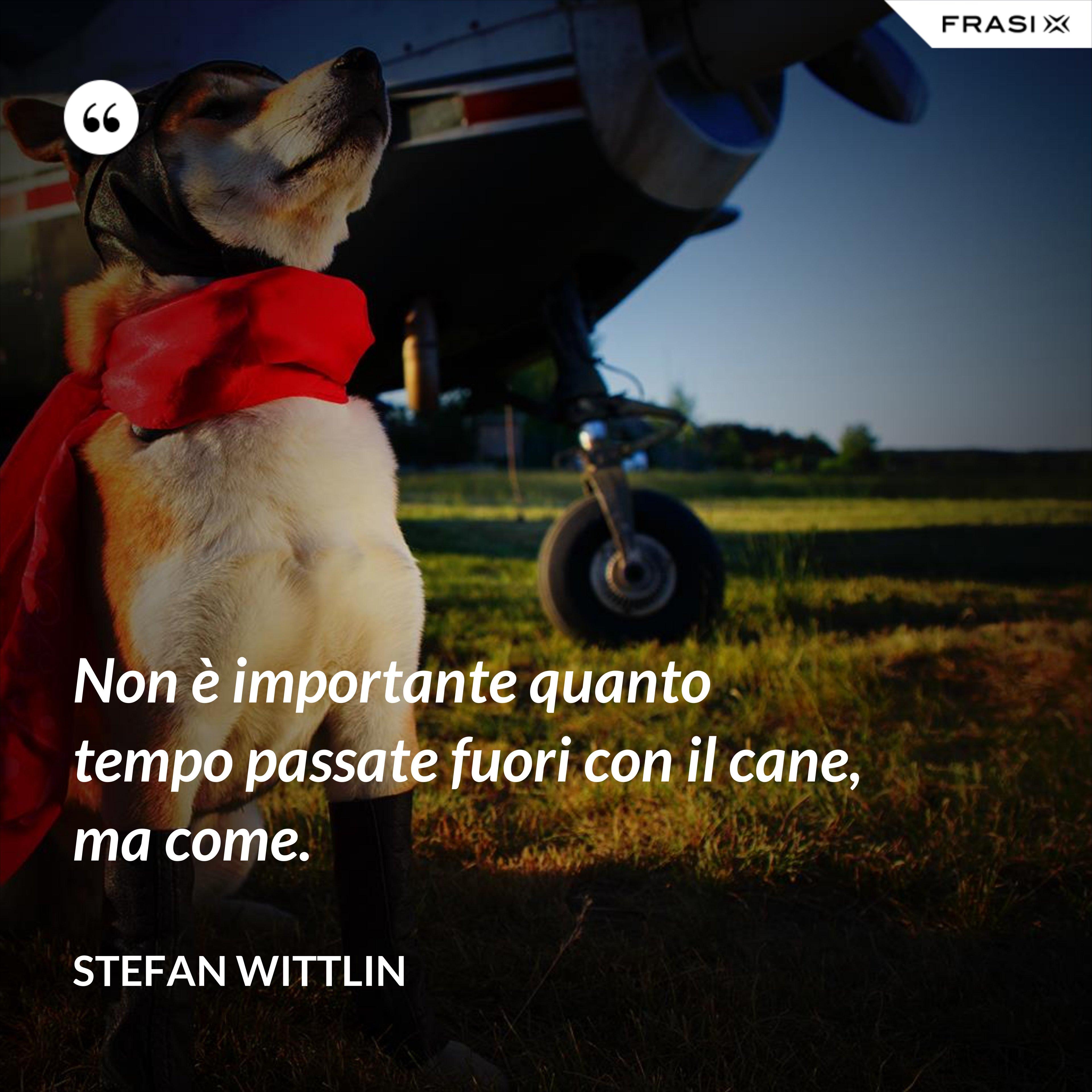 Non è importante quanto tempo passate fuori con il cane, ma come. - Stefan Wittlin