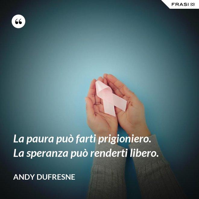 La paura può farti prigioniero. La speranza può renderti libero. - Andy Dufresne