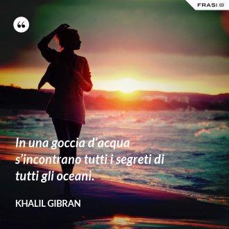 In una goccia d'acqua s'incontrano tutti i segreti di tutti gli oceani. - Khalil Gibran