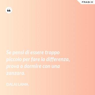 Se pensi di essere troppo piccolo per fare la differenza, prova a dormire con una zanzara. - Dalai Lama