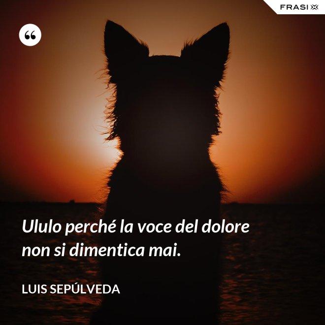 Ululo perché la voce del dolore non si dimentica mai. - Luis Sepúlveda