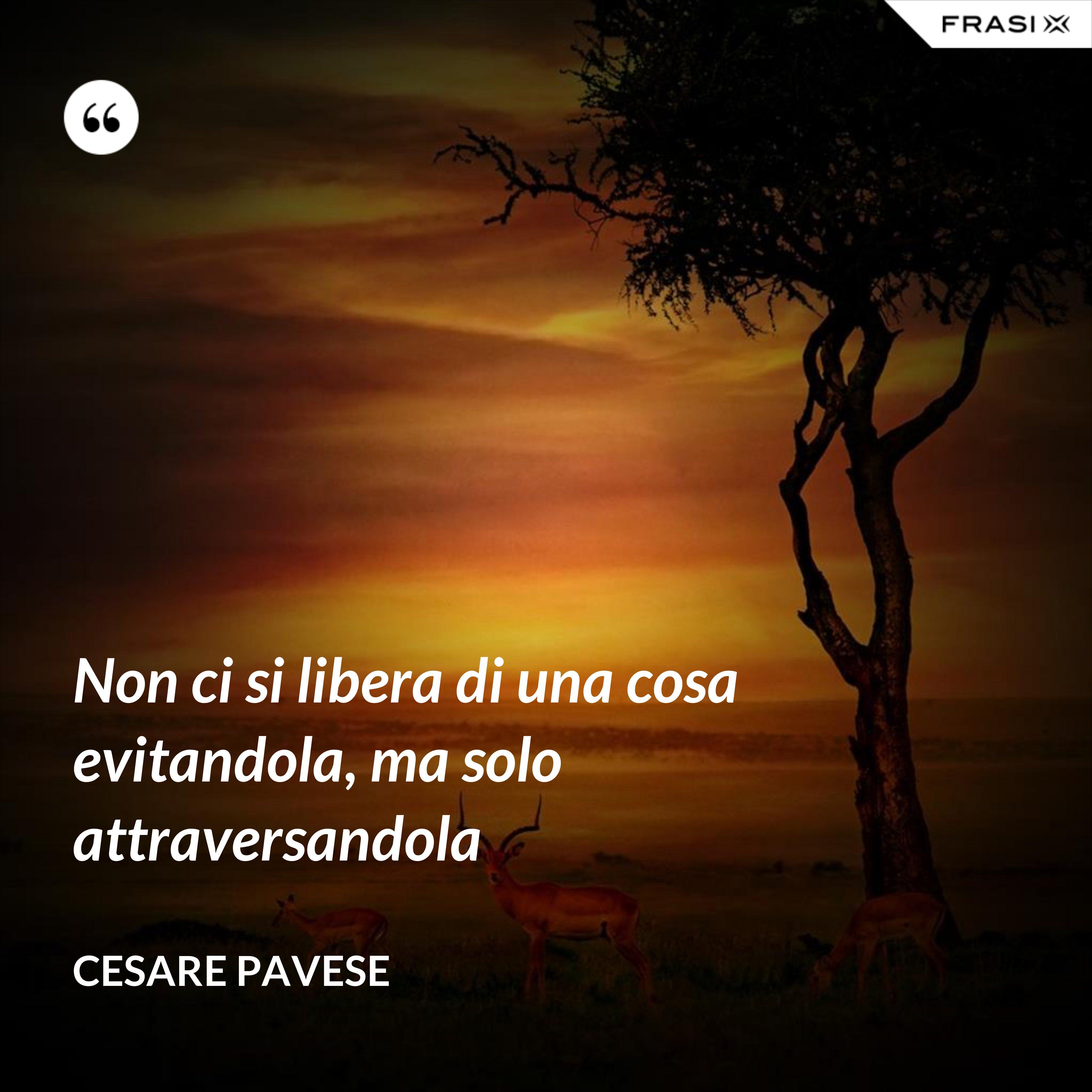 Non ci si libera di una cosa evitandola, ma solo attraversandola - Cesare Pavese