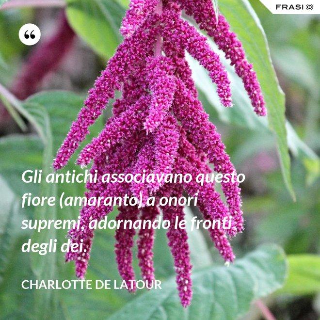 Gli antichi associavano questo fiore (amaranto) a onori supremi, adornando le fronti degli dei. - Charlotte de Latour