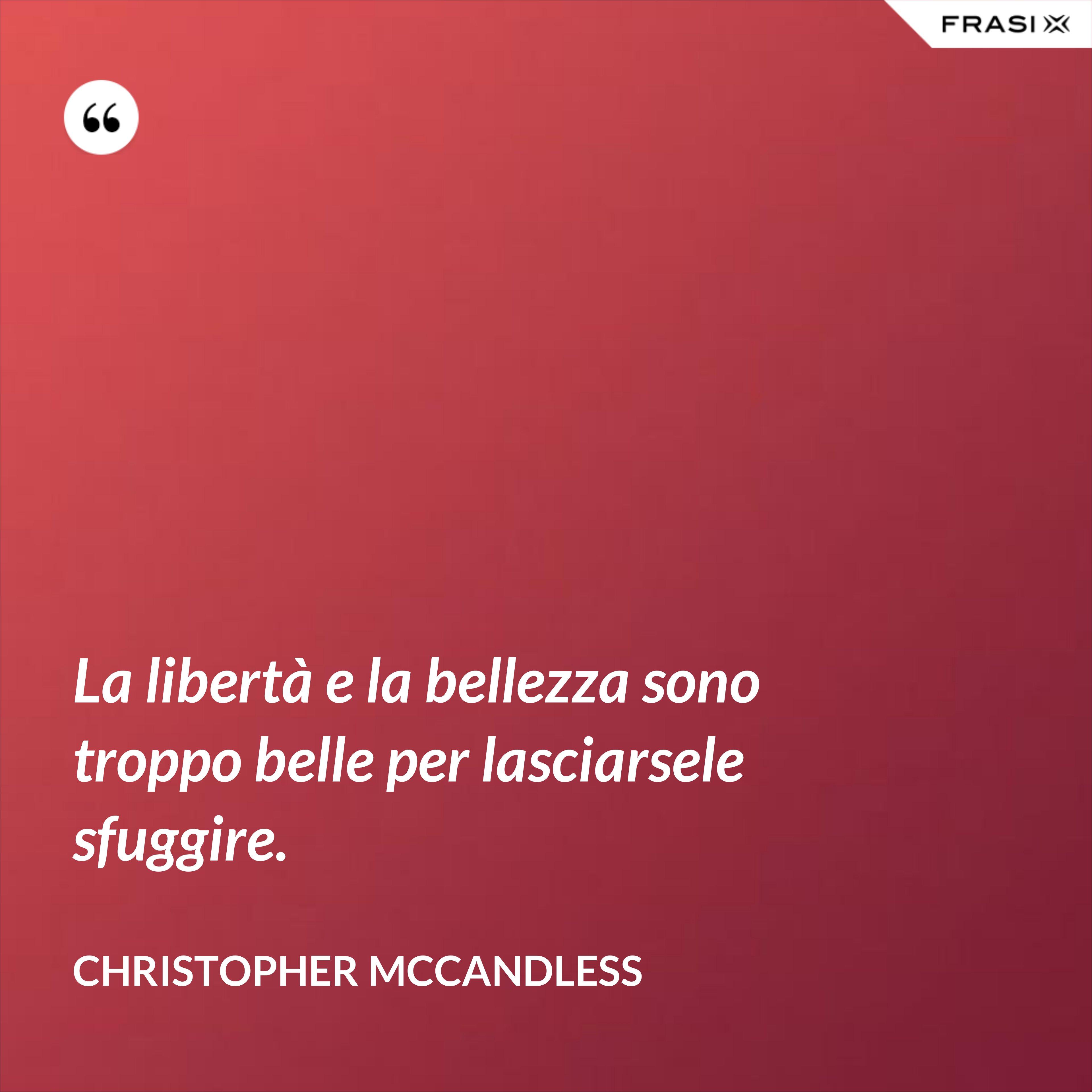 La libertà e la bellezza sono troppo belle per lasciarsele sfuggire. - Christopher McCandless