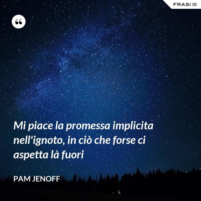 Mi piace la promessa implicita nell'ignoto, in ciò che forse ci aspetta là fuori - Pam Jenoff