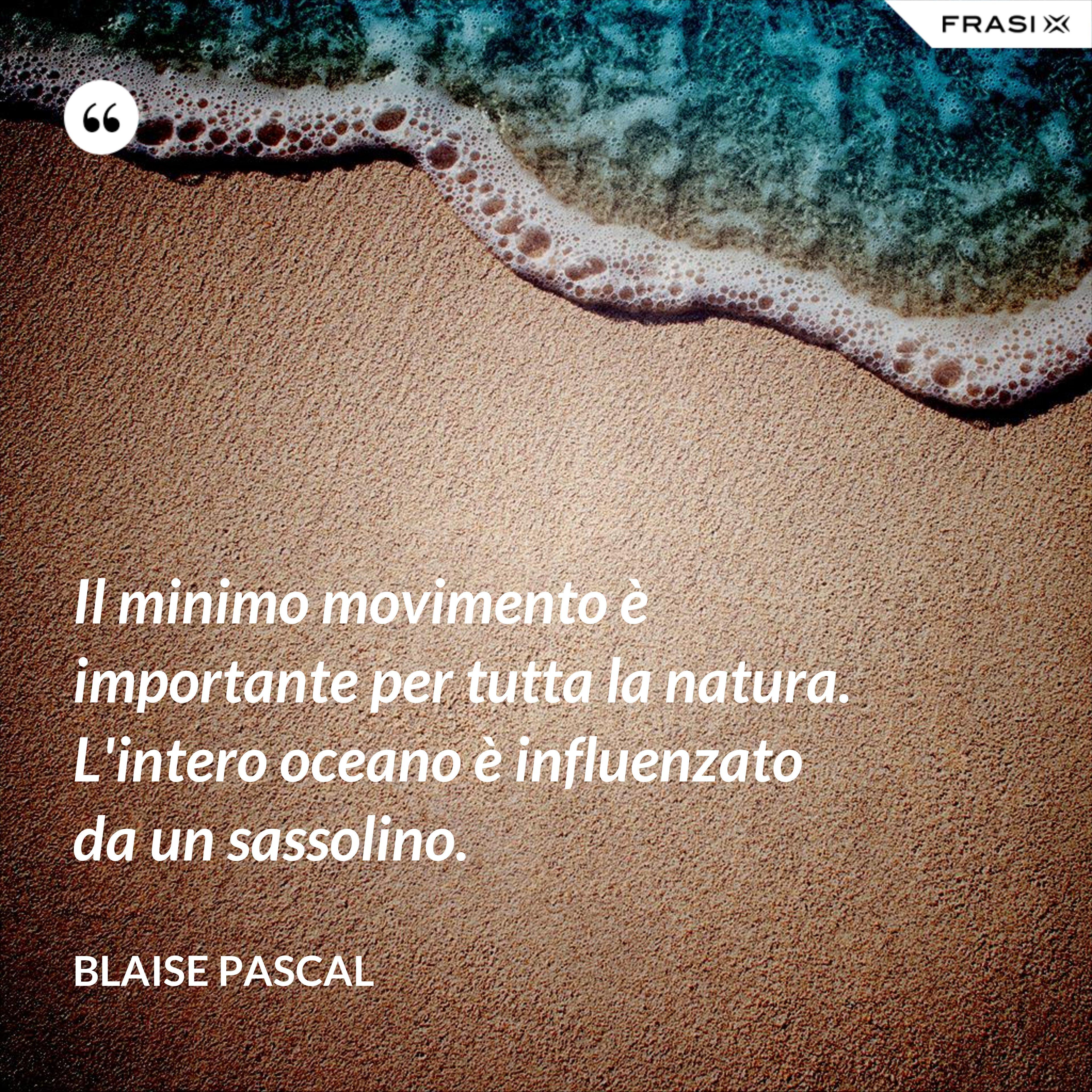 Il minimo movimento è importante per tutta la natura. L'intero oceano è influenzato da un sassolino. - Blaise Pascal
