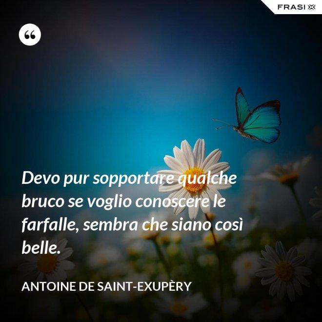Devo pur sopportare qualche bruco se voglio conoscere le farfalle, sembra che siano così belle. - Antoine de Saint-Exupèry