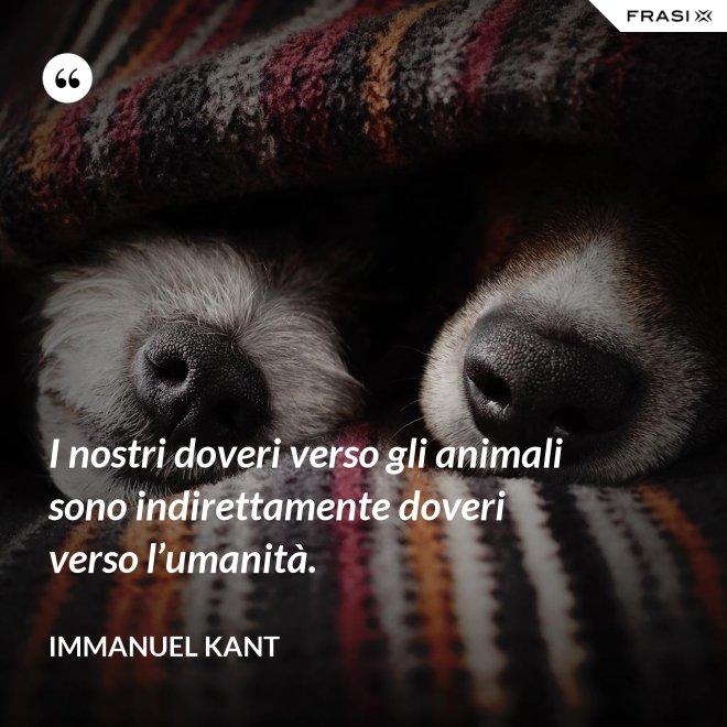 I nostri doveri verso gli animali sono indirettamente doveri verso l'umanità. - Immanuel Kant