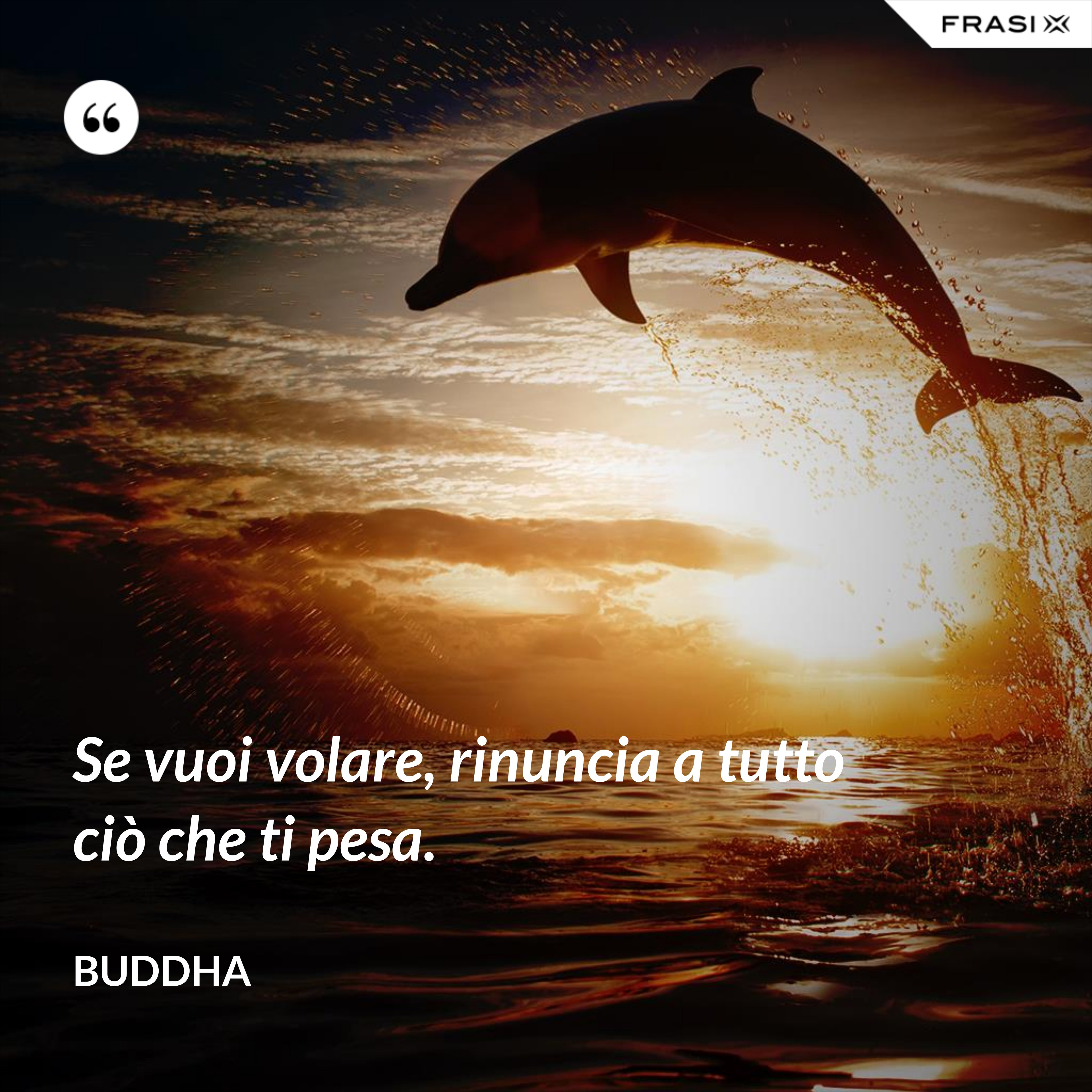 Se vuoi volare, rinuncia a tutto ciò che ti pesa. - Buddha