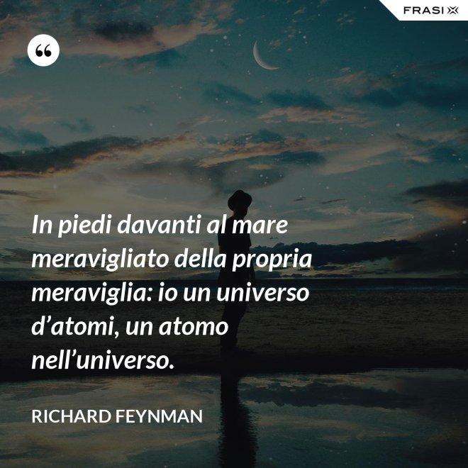In piedi davanti al mare meravigliato della propria meraviglia: io un universo d'atomi, un atomo nell'universo. - Richard Feynman
