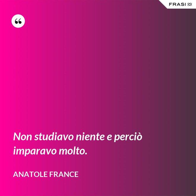 Non studiavo niente e perciò imparavo molto. - Anatole France