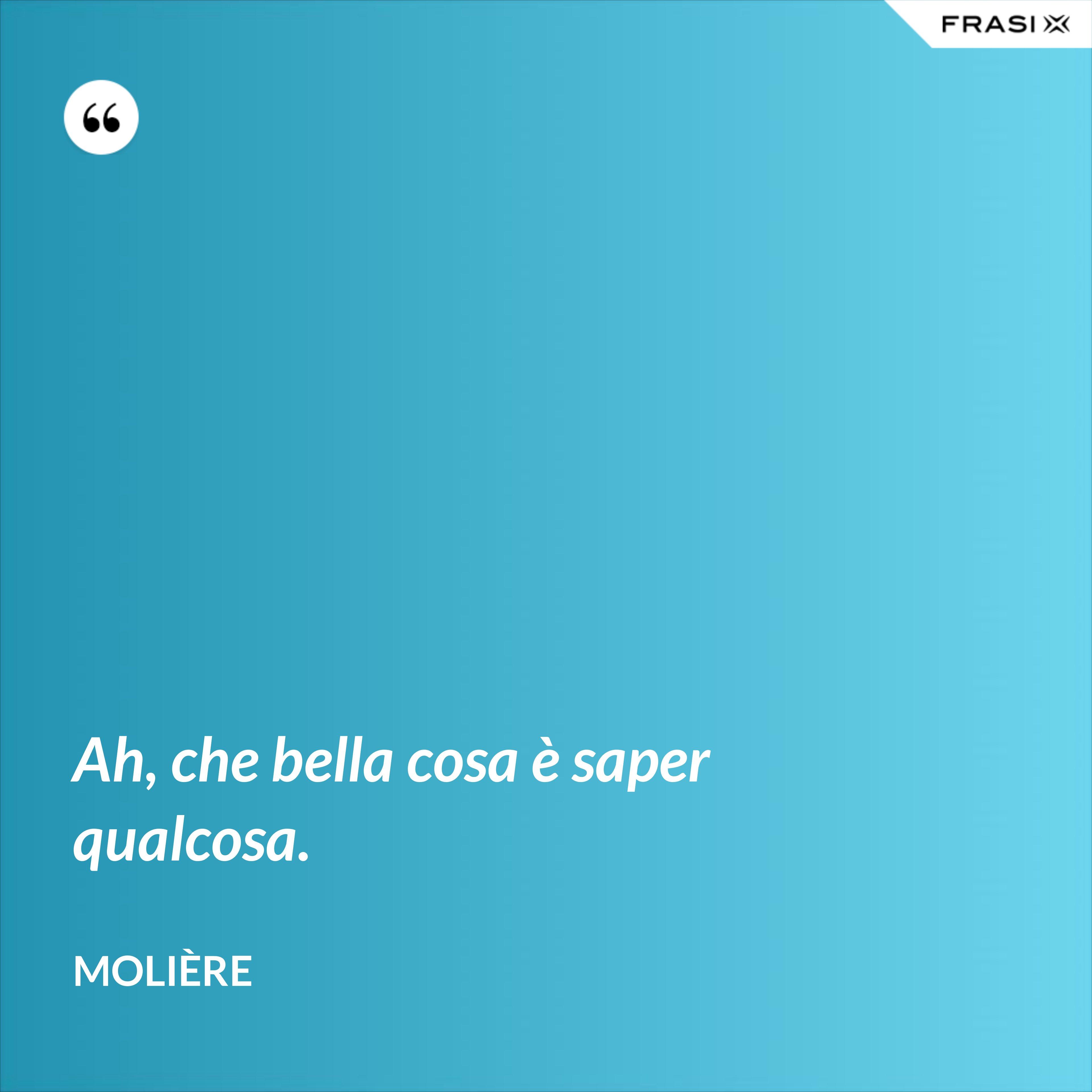 Ah, che bella cosa è saper qualcosa. - Molière