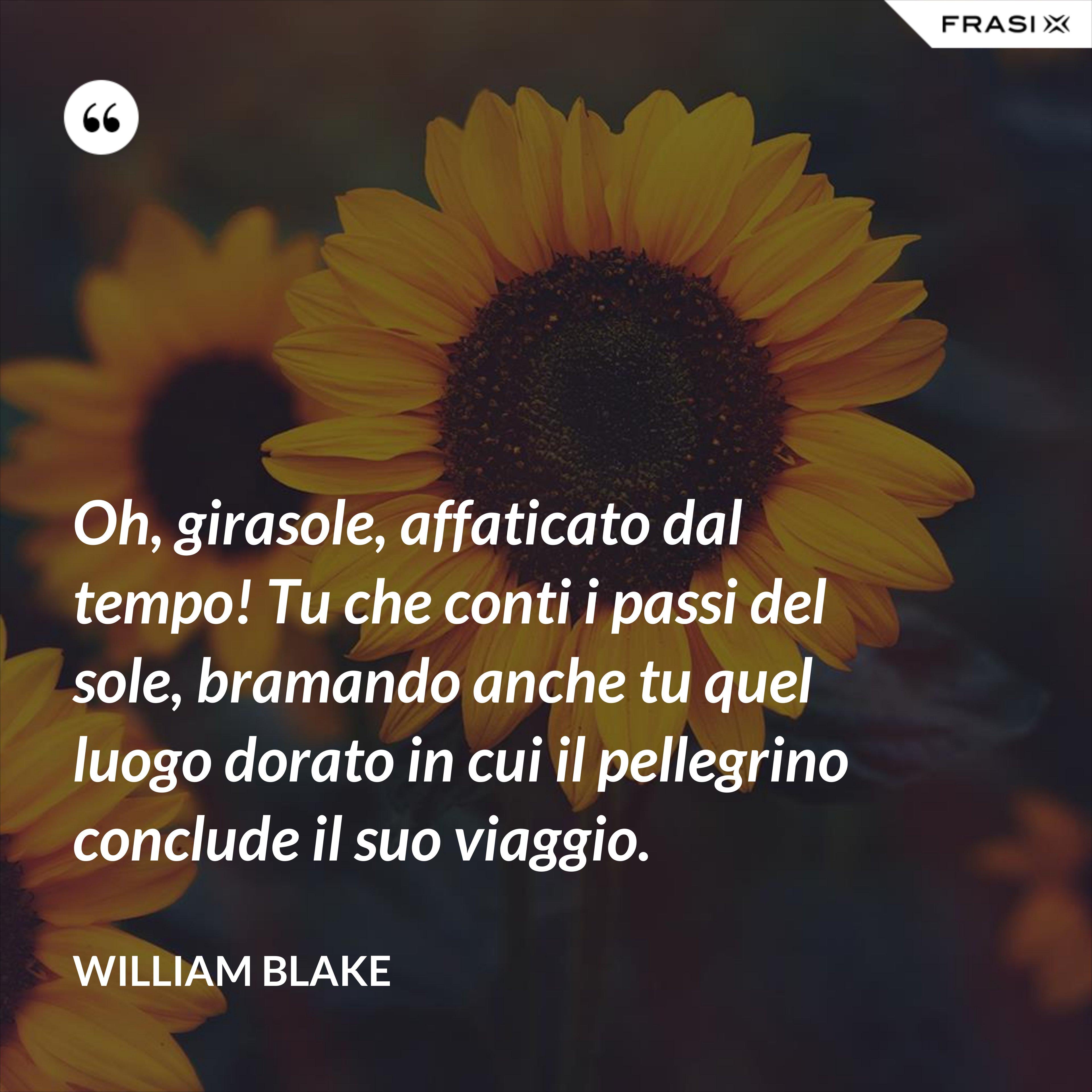 Oh, girasole, affaticato dal tempo! Tu che conti i passi del sole, bramando anche tu quel luogo dorato in cui il pellegrino conclude il suo viaggio. - William Blake