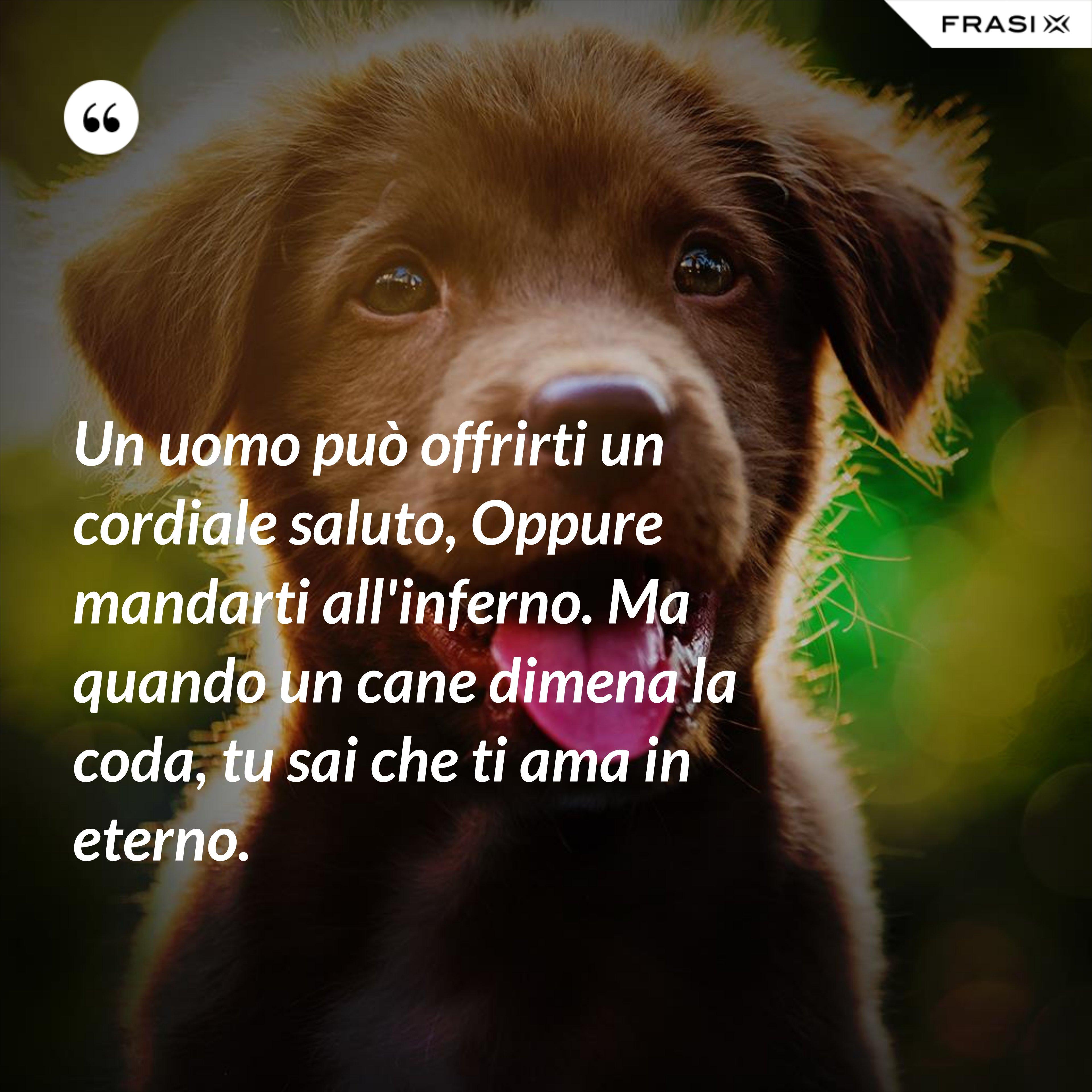 Un uomo può offrirti un cordiale saluto, Oppure mandarti all'inferno. Ma quando un cane dimena la coda, tu sai che ti ama in eterno. - Anonimo