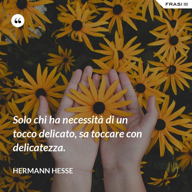 Solo chi ha necessità di un tocco delicato, sa toccare con delicatezza. - Hermann Hesse