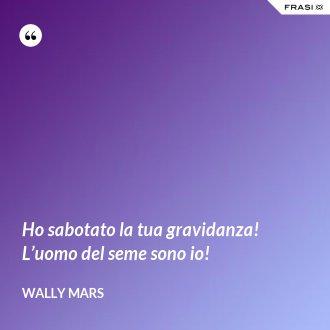 Ho sabotato la tua gravidanza! L'uomo del seme sono io! - Wally Mars