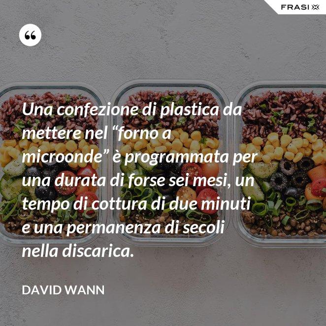 """Una confezione di plastica da mettere nel """"forno a microonde"""" è programmata per una durata di forse sei mesi, un tempo di cottura di due minuti e una permanenza di secoli nella discarica."""