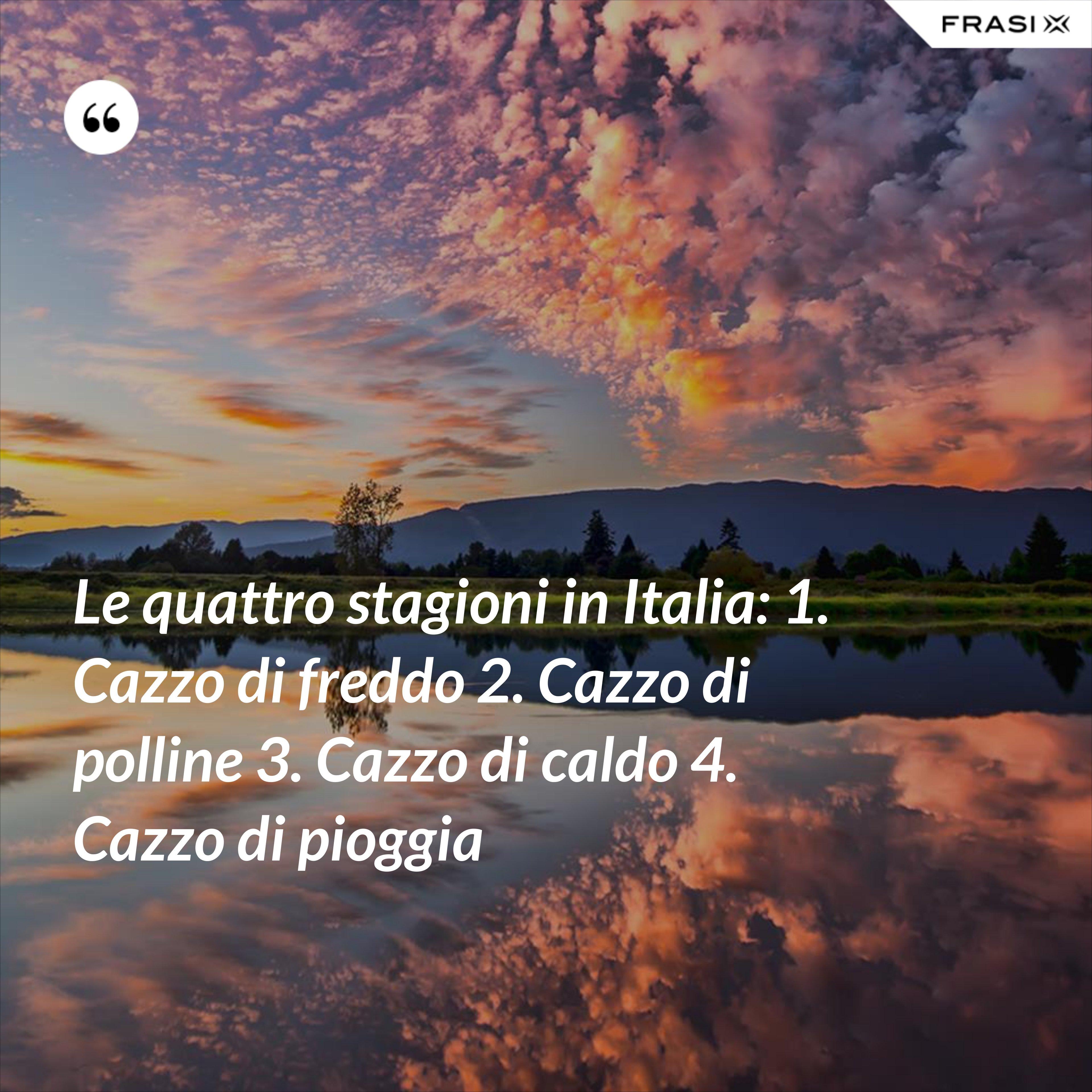 Le quattro stagioni in Italia: 1. Cazzo di freddo 2. Cazzo di polline 3. Cazzo di caldo 4. Cazzo di pioggia - Anonimo
