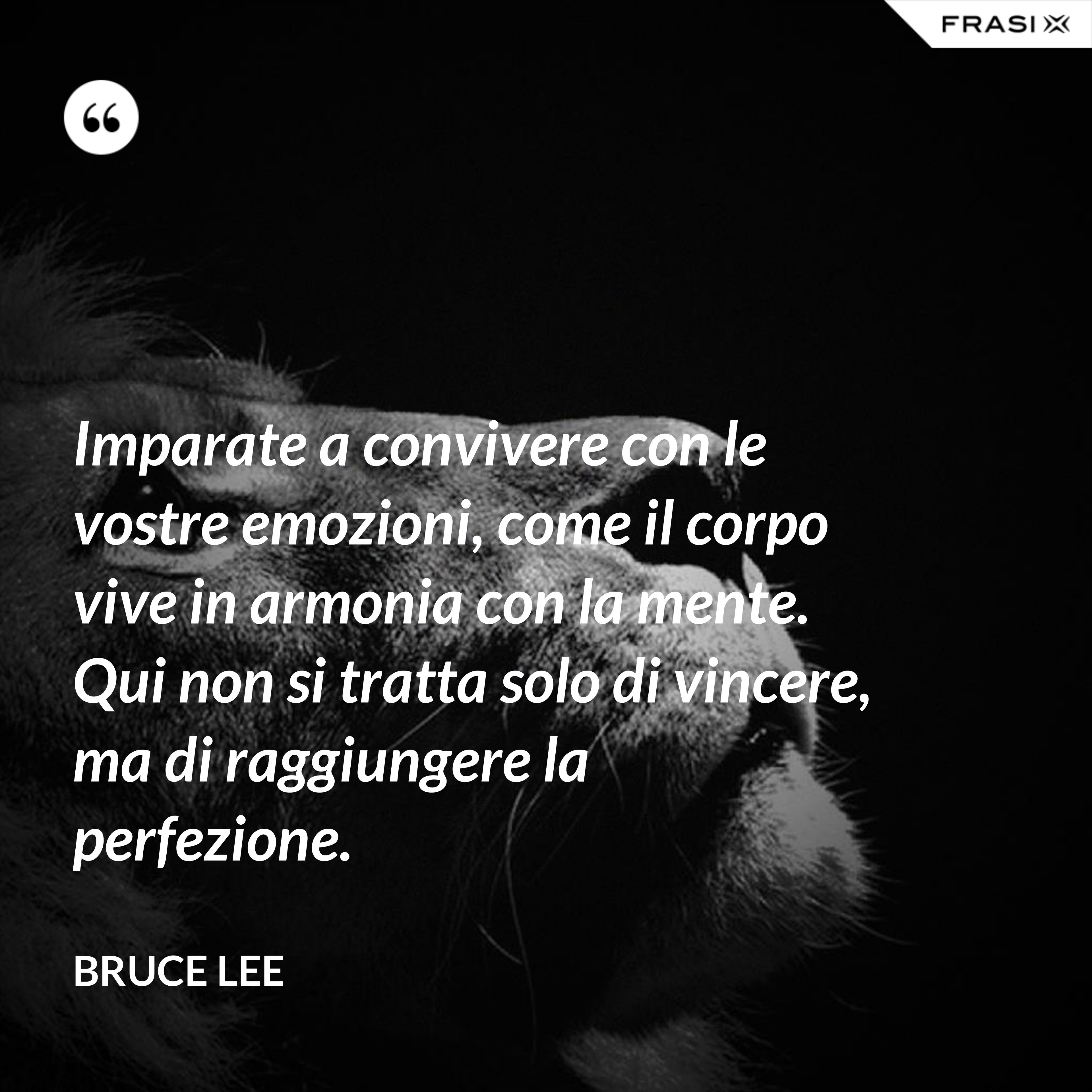 Imparate a convivere con le vostre emozioni, come il corpo vive in armonia con la mente. Qui non si tratta solo di vincere, ma di raggiungere la perfezione. - Bruce Lee