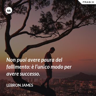 Non puoi avere paura del fallimento: è l'unico modo per avere successo. - LeBron James