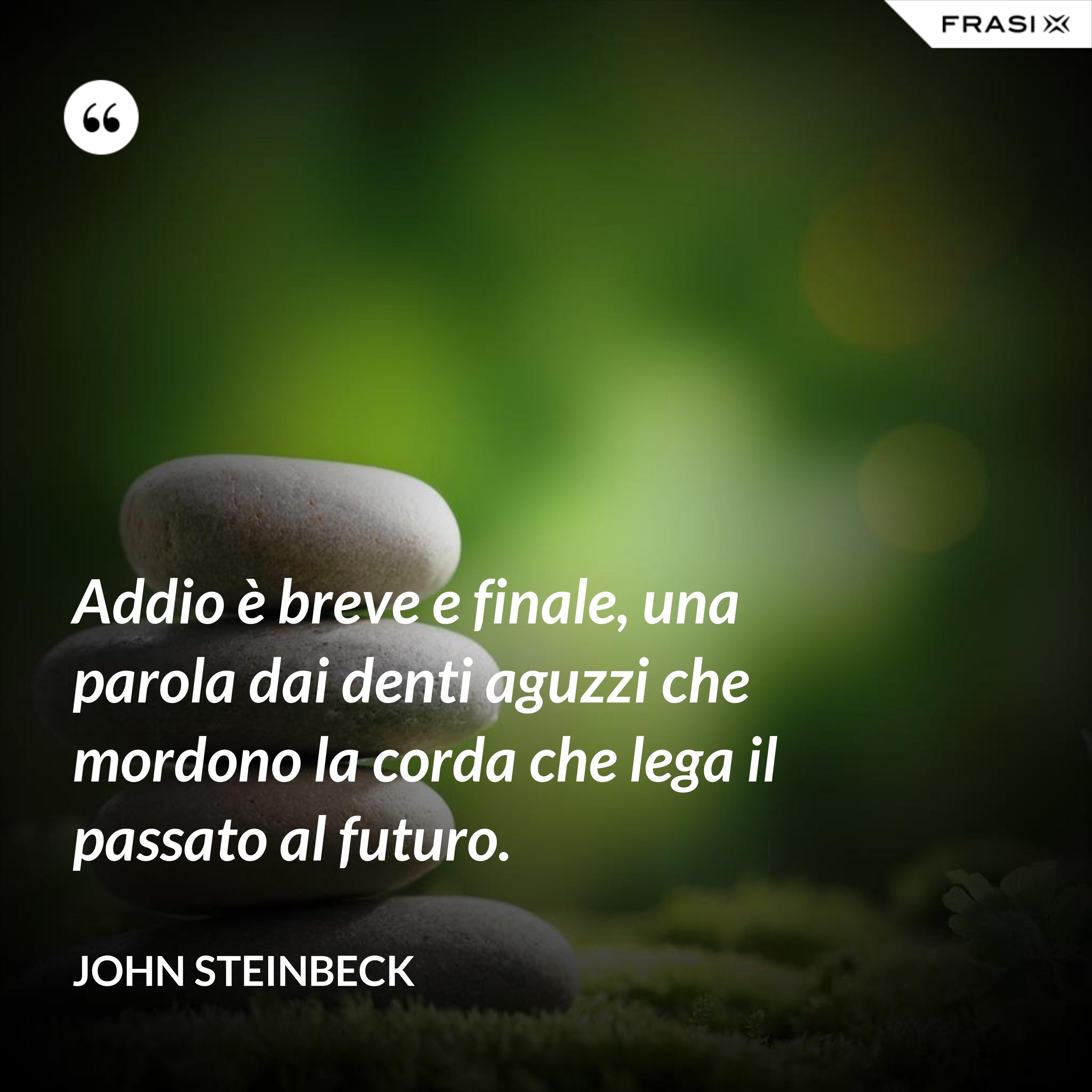 Addio è breve e finale, una parola dai denti aguzzi che mordono la corda che lega il passato al futuro. - John Steinbeck