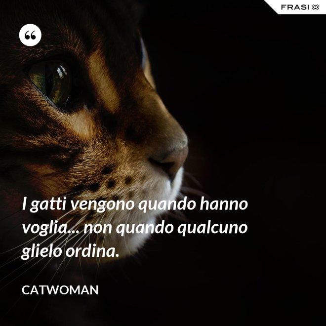 I gatti vengono quando hanno voglia... non quando qualcuno glielo ordina. - Catwoman