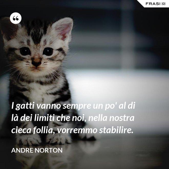 I gatti vanno sempre un po' al di là dei limiti che noi, nella nostra cieca follia, vorremmo stabilire. - Andre Norton
