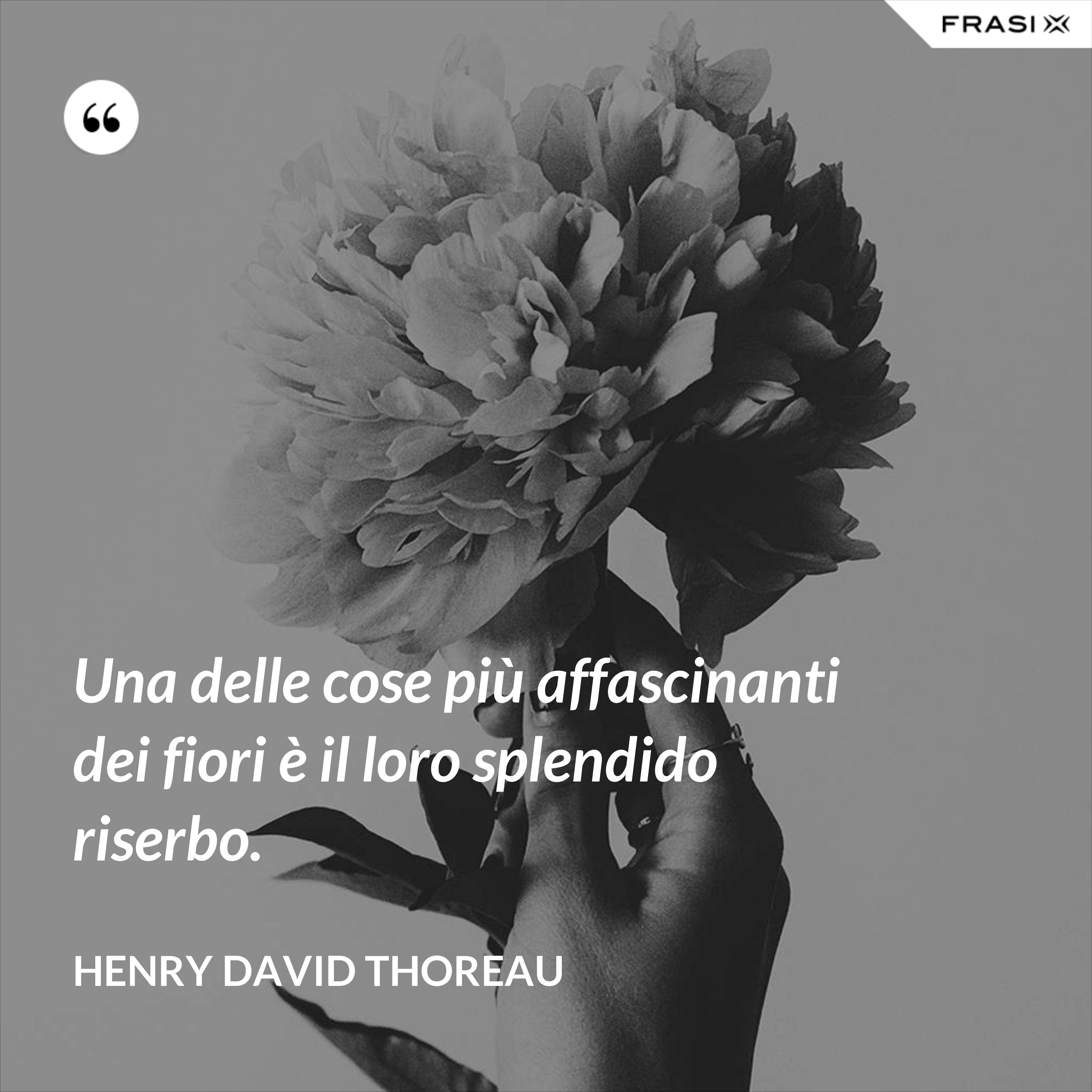 Una delle cose più affascinanti dei fiori è il loro splendido riserbo. - Henry David Thoreau