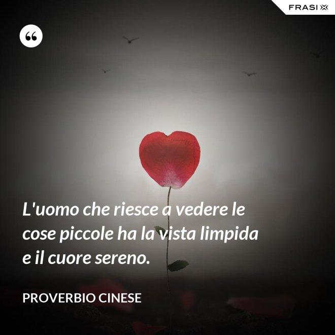 L'uomo che riesce a vedere le cose piccole ha la vista limpida e il cuore sereno. - Proverbio cinese