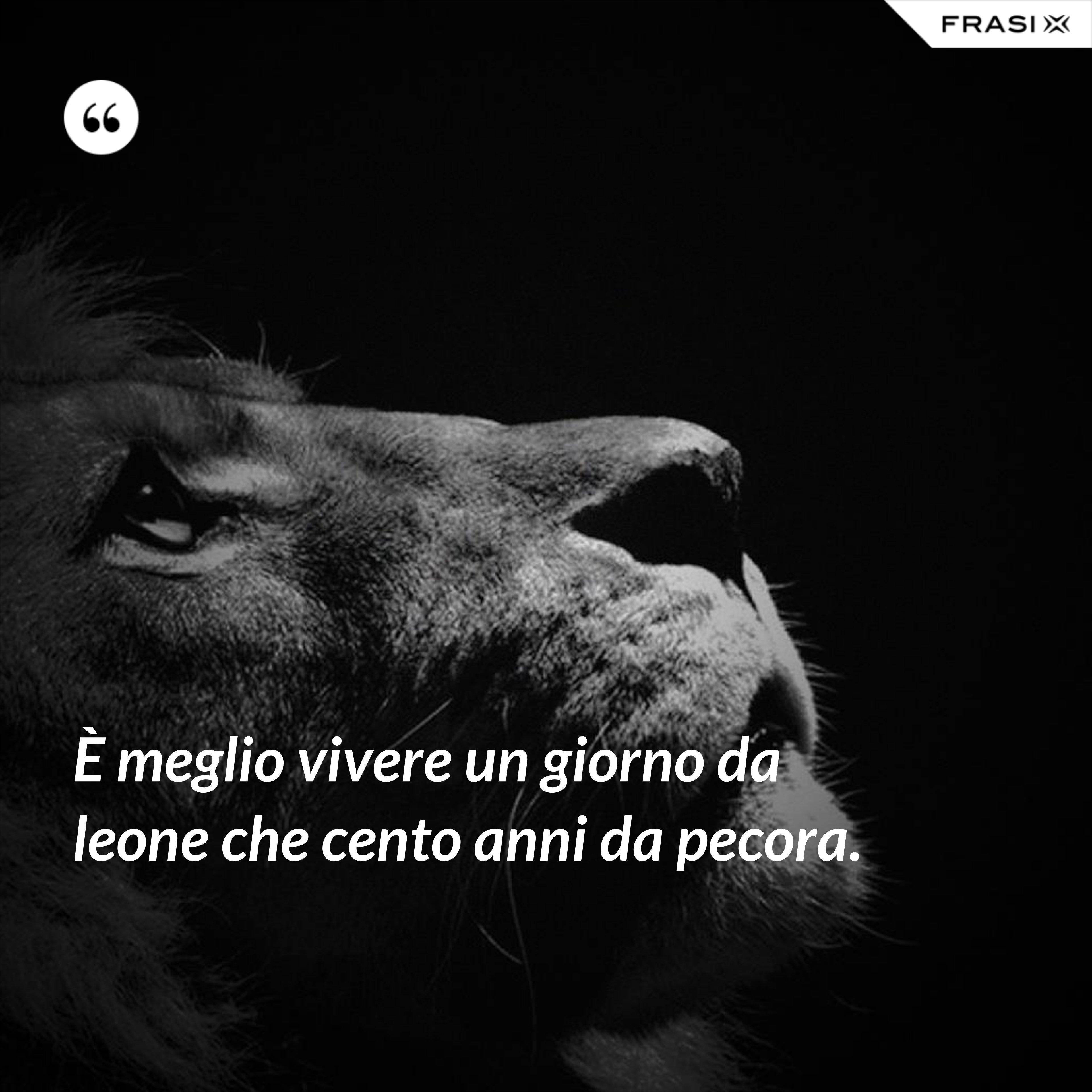 È meglio vivere un giorno da leone che cento anni da pecora. - Anonimo