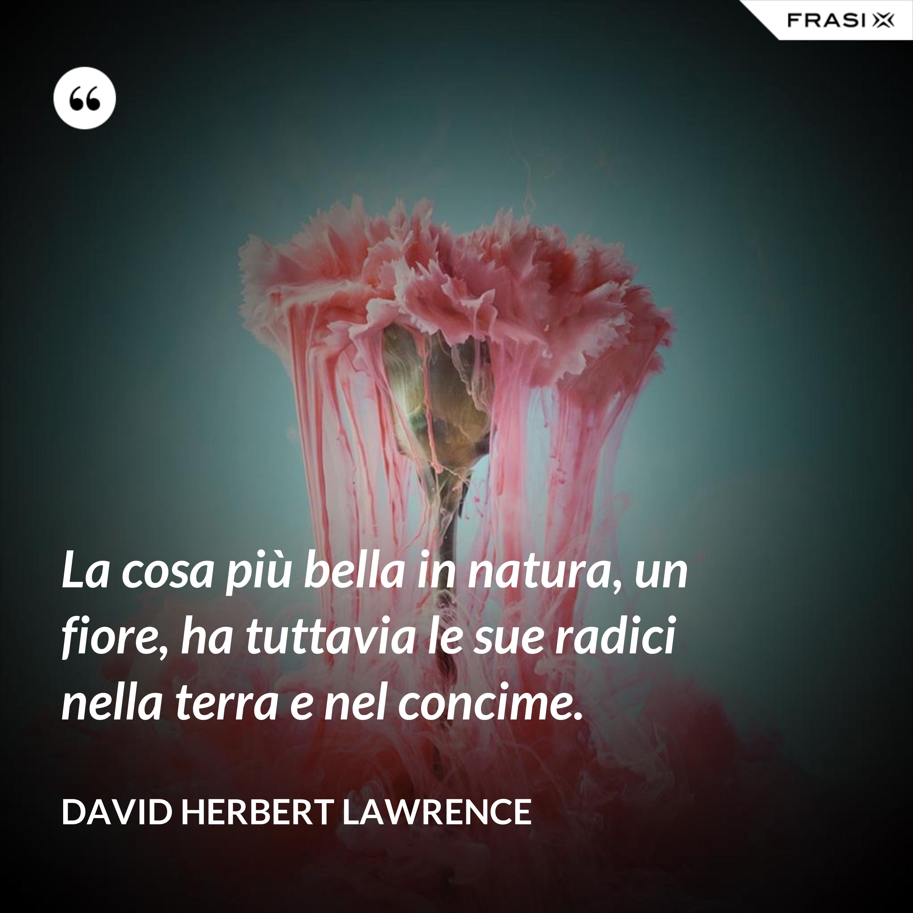 La cosa più bella in natura, un fiore, ha tuttavia le sue radici nella terra e nel concime. - David Herbert Lawrence