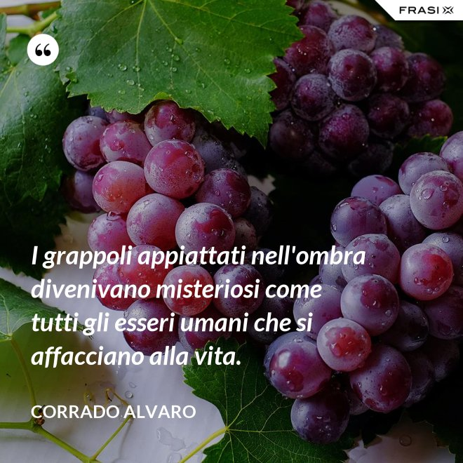 I grappoli appiattati nell'ombra divenivano misteriosi come tutti gli esseri umani che si affacciano alla vita. - Corrado Alvaro
