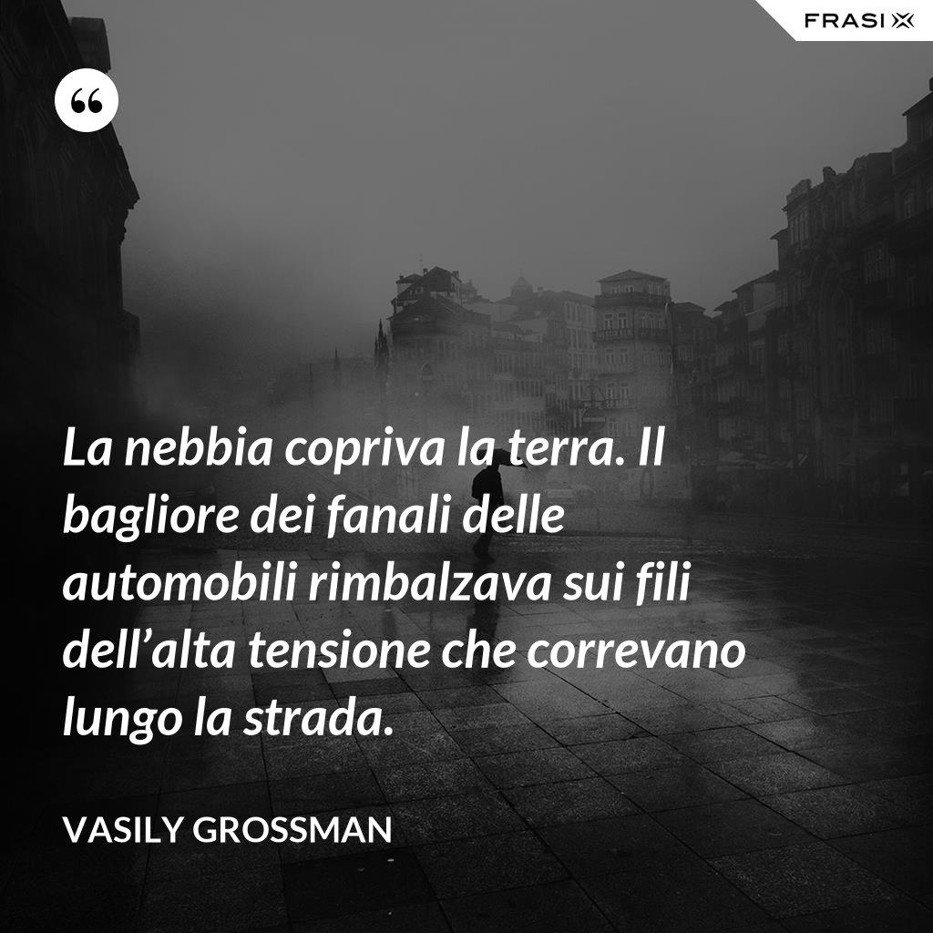 La nebbia copriva la terra. Il bagliore dei fanali delle automobili rimbalzava sui fili dell'alta tensione che correvano lungo la strada. - Vasily Grossman
