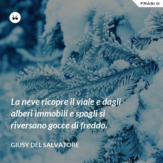 La neve ricopre il viale e dagli alberi immobili e spogli si riversano gocce di freddo. - Giusy Del Salvatore