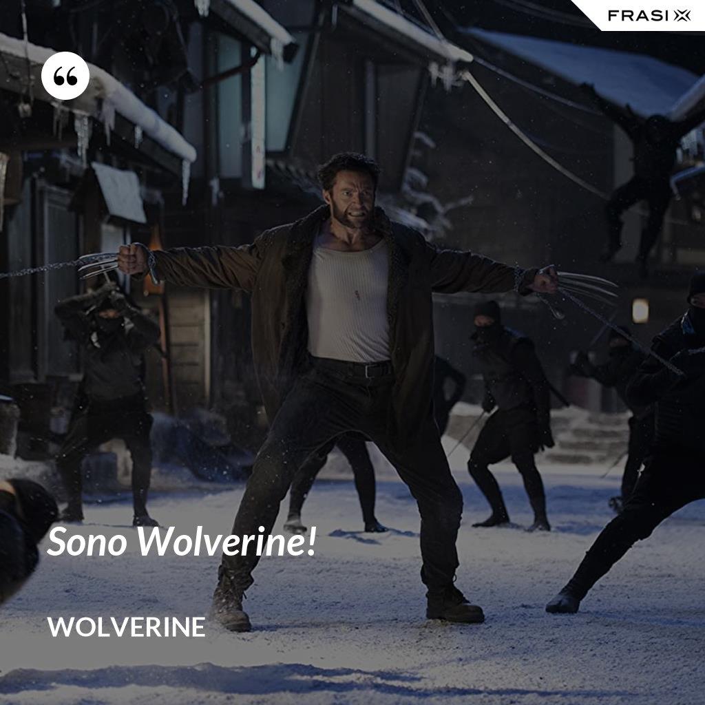 Sono Wolverine! - Wolverine