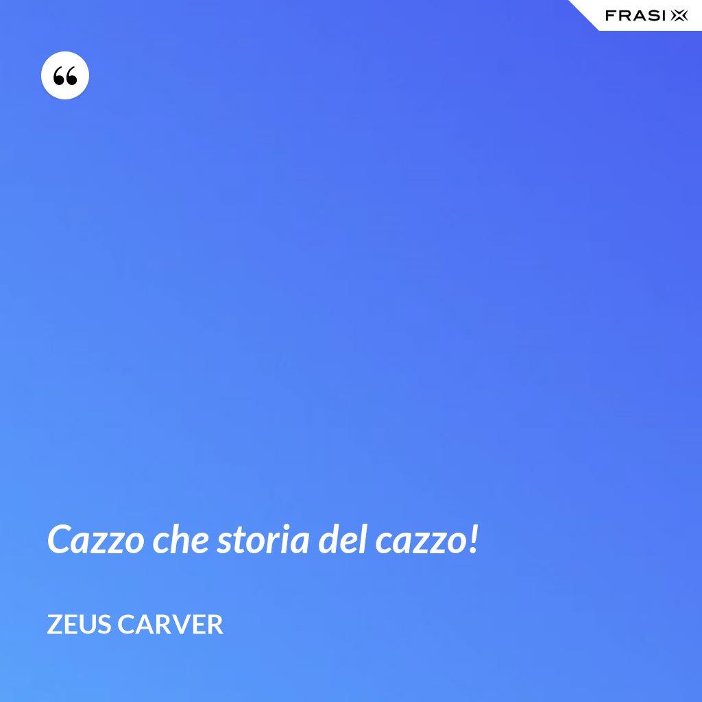 Cazzo che storia del cazzo! - Zeus Carver