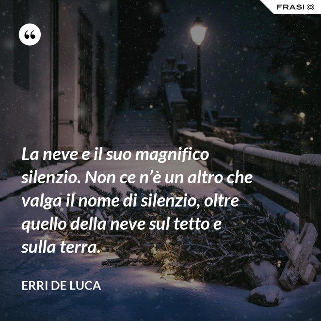 La neve e il suo magnifico silenzio. Non ce n'è un altro che valga il nome di silenzio, oltre quello della neve sul tetto e sulla terra.